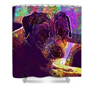 Dog Terrier Russell Pet Animal  Shower Curtain