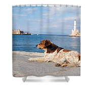 Dog Watch Shower Curtain