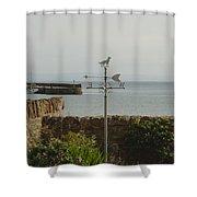 Dog Weathervane Shower Curtain
