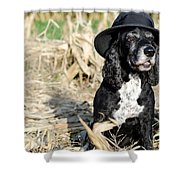Dog With A Hat Shower Curtain