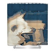 Doge Sneeze 3 Shower Curtain