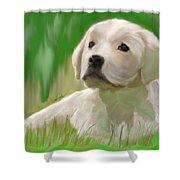 Doggie Seems Sad Shower Curtain