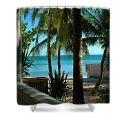 Dog's Beach Key West Fl Shower Curtain