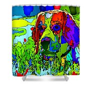 Dogs Can See In Color Shower Curtain