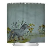 Dogs Dogs  Dogs Album Shower Curtain