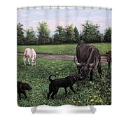 Dogs Meeting Bull Shower Curtain