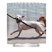 Dogs On The Beach Shower Curtain