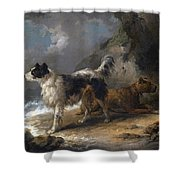 Dogs On The Coast Shower Curtain