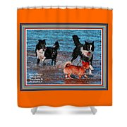 Dogs Playing On The Beach No. 2 L A With Decorative Ornate Printed Frame. Shower Curtain