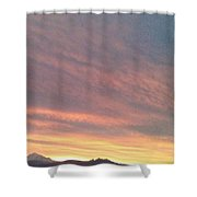 Dogs Running In Purple Shower Curtain