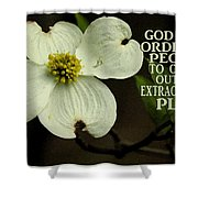 Dogwood Bloom / Flower Shower Curtain