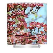 Dogwood Flowering Trees Pink Dogwood Flowers Baslee Troutman Shower Curtain
