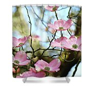 Dogwood Flowers Pink Dogwood Tree Landscape 9 Giclee Art Prints Baslee Troutman Shower Curtain