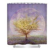 Dogwood In The Lavender Mist Shower Curtain