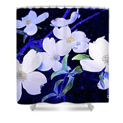 Dogwood Night Blooms Shower Curtain