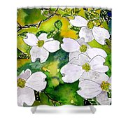 Dogwood Tree Flowers Shower Curtain