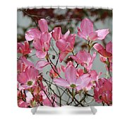 Dogwood Trees Flower Blossoms Art Baslee Troutman Shower Curtain