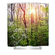 Dogwoods In The Forest Shower Curtain