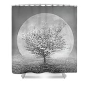 Dogwoods In The Moon Black And White Shower Curtain