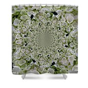 Doily Of Flowers Shower Curtain