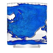 Dolphin World Map Shower Curtain