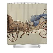 Doll Carriage Shower Curtain
