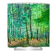 Dolly Sods Trees Shower Curtain