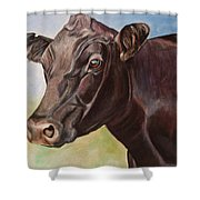 Dolly The Angus Cow Shower Curtain