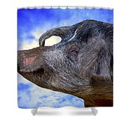 Dolly Under The Smiling Moon Shower Curtain