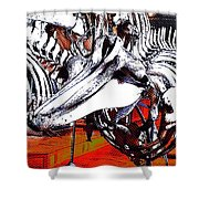 Dolphin Always Smile Shower Curtain