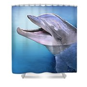Dolphin In The Moonlight Shower Curtain