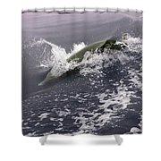 Runnin' Dolphin  Shower Curtain