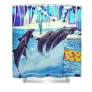 Dolphin Show Shower Curtain