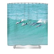 Dolphin Team Shower Curtain