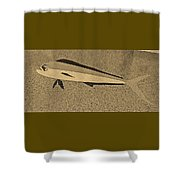Dolphinfish In Sepia Tones Shower Curtain
