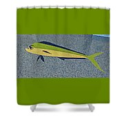 Dolphinfish Inlay On Alabama Welcome Center Floor Shower Curtain