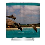 Dolphins Fly Shower Curtain