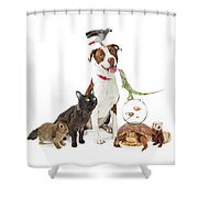 Domestic Pets Group Together With Copy Space Shower Curtain