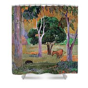 Dominican Landscape Shower Curtain