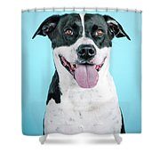 Domino 1 Shower Curtain
