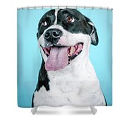Domino 10 Shower Curtain