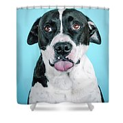 Domino 5 Shower Curtain