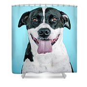 Domino 7 Shower Curtain