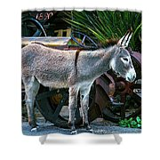 Donkey And Old Tractor Shower Curtain