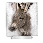 Donkey Foal No 02 Shower Curtain