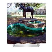 Donkey Fountain Shower Curtain