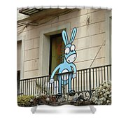 Donkey In The Placa Shower Curtain