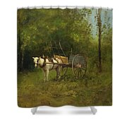 Donkey With Cart Shower Curtain