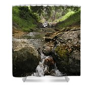 Donner Creek Shower Curtain