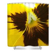 Don't Be A Pansy Shower Curtain